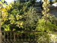 Kitchenette Suite
