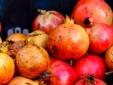 Casa da Alfarroba - Cochichos Farm Olhao Faro Algarve Hotel apartamentos con cocina