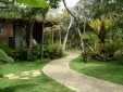 butterfly house cottage bungalow rustical nature