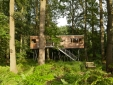 tree resort germany