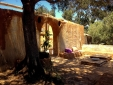 Into the Wild Algarve Glamping in Nature Tent and Treehouse