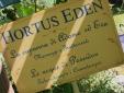 hortus garden