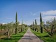 Domaine des Andéols Breakfast