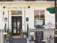 Lime Tree Hotel boutique design