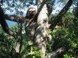 Ilha do Toque Boutique Hotel Naturaleza